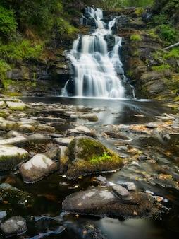 滝の白い橋。夏の風景。野生の自然