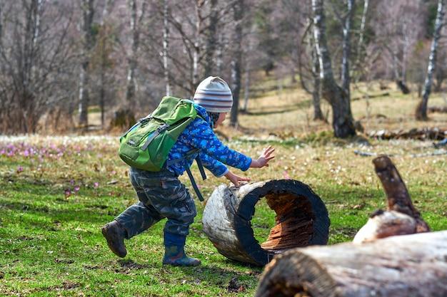 バックパックで子供をハイキング、切り株で遊ぶ、車輪のように転がす