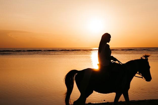 海の近くの黄金の色鮮やかな日没時にビーチで馬に乗って若い女性のシルエット