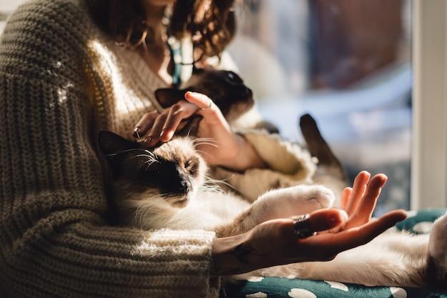 女性の手で猫の足
