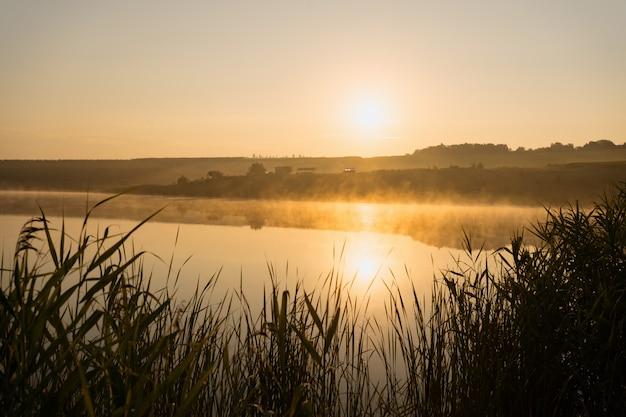 霧深い夏の湖の日の出。霧深い夏の朝のスペリオル湖の日の出
