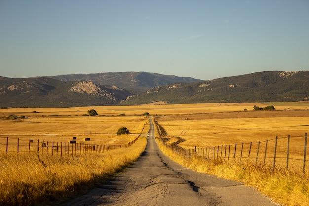 山の真ん中にある小さな道