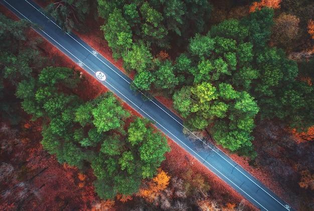 Аэрофотоснимок дороги в красивом осеннем лесу