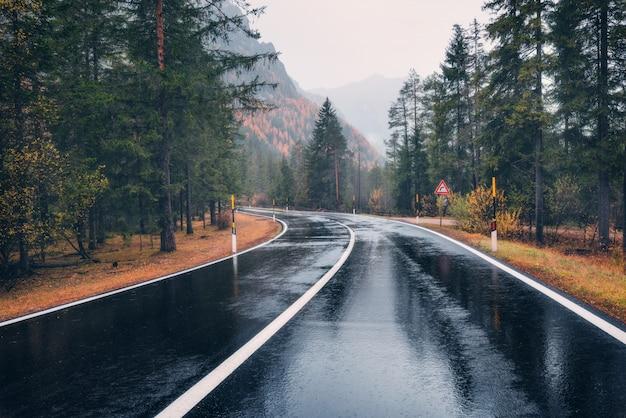 雨の中で秋の森の道。曇りの雨の日に完璧なアスファルト山道