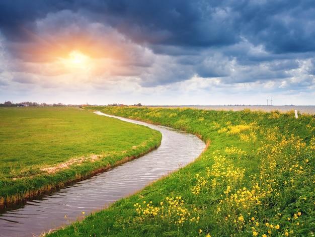 Красивый пейзаж с полем зеленой травы