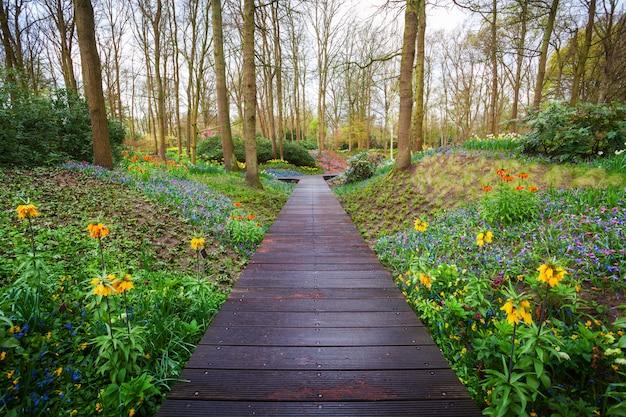 Деревянная дорожка через парк кёкенхоф в нидерландах