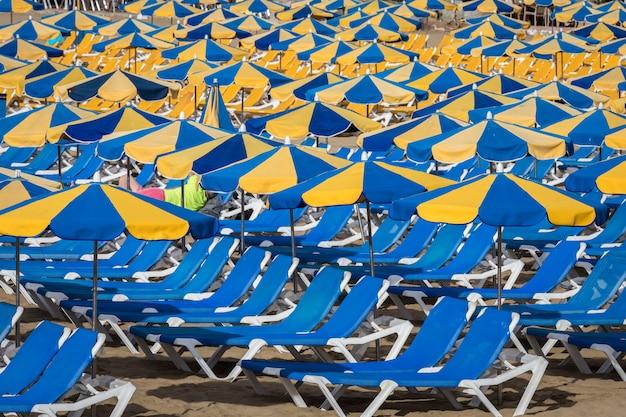 Ряды синих лежаков с синими и желтыми зонтиками на пляже плайя де пуэрто-рико на канарских островах