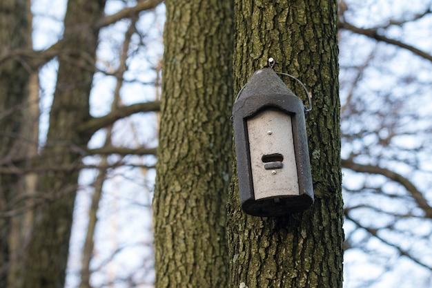 木にぶら下がっている木製のコンクリート製のバットボックス