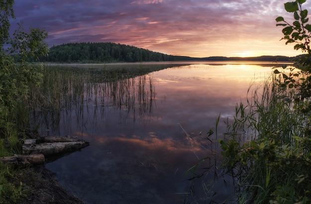 Восход солнца над озером с отражением голых деревьев в воде
