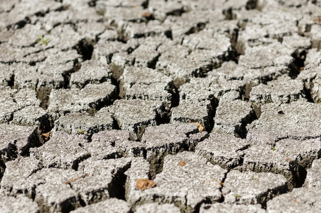 Треснувшая земля после засухи