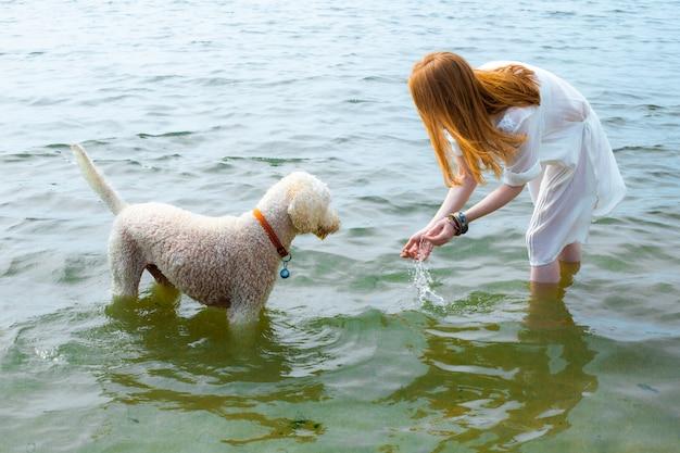 Молодая женщина пляж море собака вода рыжие волосы север песок белое платье схевенинген ген хааг