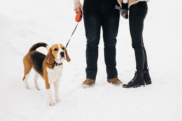 Зимняя любовная история на льду. стильный парень и девушка с собакой гуляют в снежном