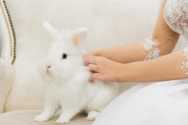 Милый белый кролик сидит рядом с невестой. утро свадебного дня