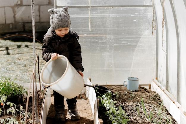 Маленький мальчик сажает и поливает рассаду овощей в теплице