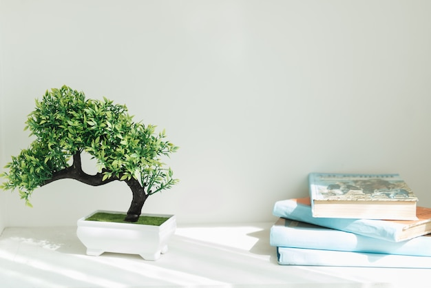 青い本、盆栽の木の本棚。白いインテリア。部屋の装飾。