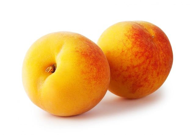 Два спелых желтых абрикоса