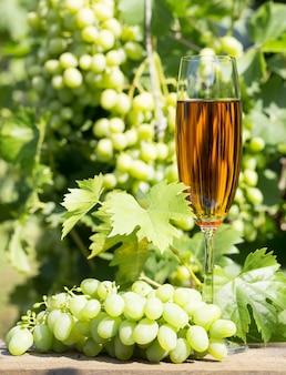 Бокал вина и гроздь винограда
