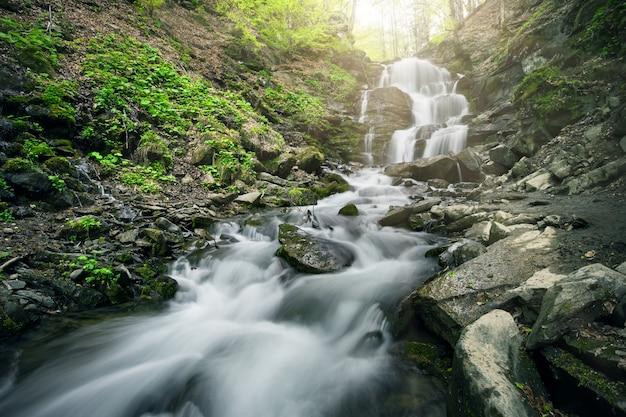 黒い石の間で森の滝