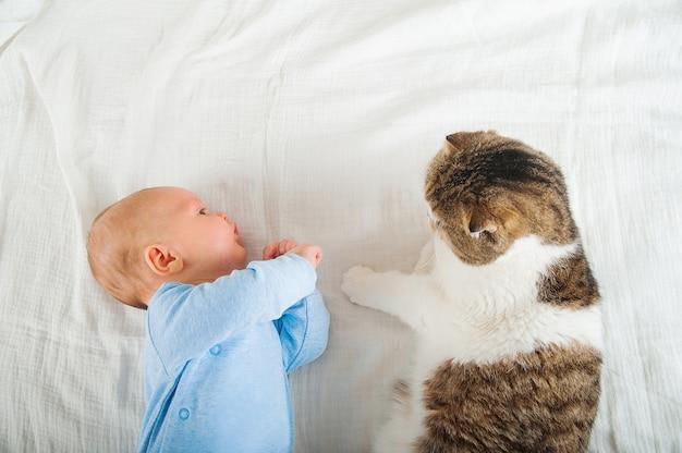 Новорожденный спит с кошкой