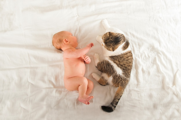 Новорожденный спит крупным планом. ребенок спит и кошка и копией пространства.