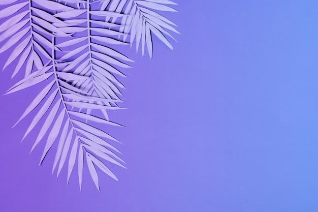 ネオン色のヤシの葉