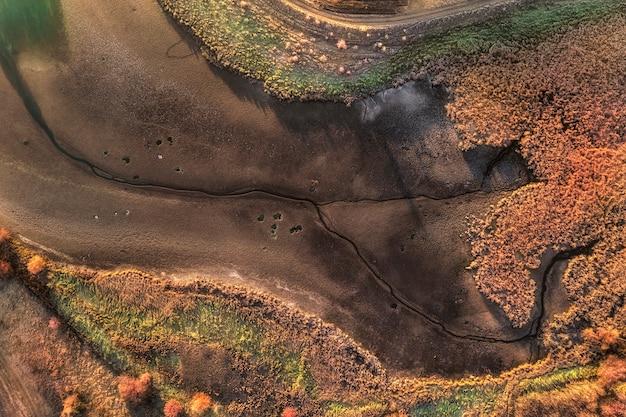 Пруд полностью высох, и большинство растений вокруг него погибли из-за глобального потепления.