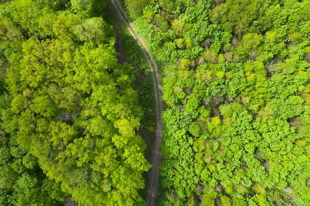 Вид сверху грунтовой лесной дороги.
