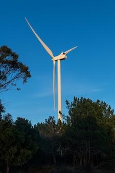 電力生産のための風力タービン。省エネコンセプト