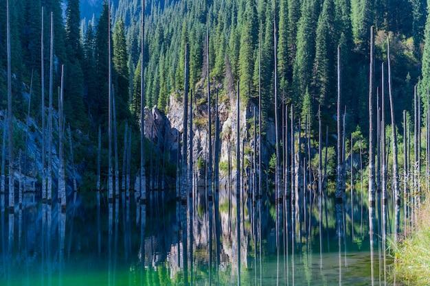 Озеро каинды - горное озеро в казахстане