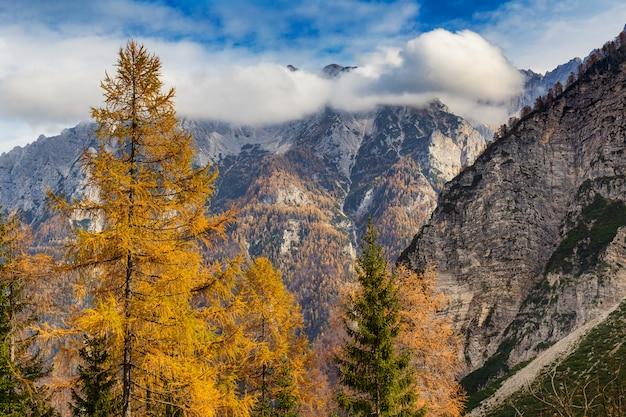 Вид на словенские альпы в осенний сезон с разноцветными деревьями и пасмурным голубым небом