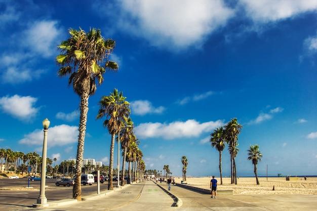 Променад пляжа венес с пальмами, лос-анджелес, сша
