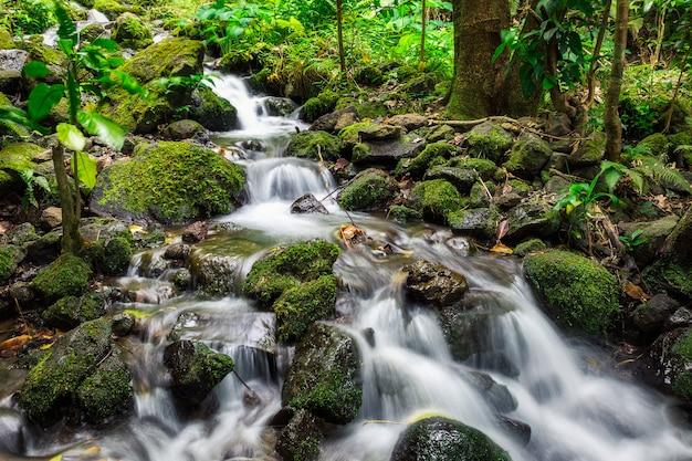 ハワイ、オアフ島の熱帯雨林で撮影されたクリークカスケード長時間露光