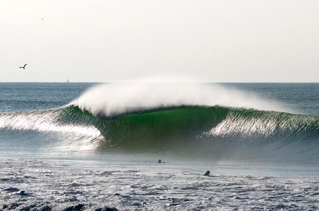 ランドフランスの完璧な波