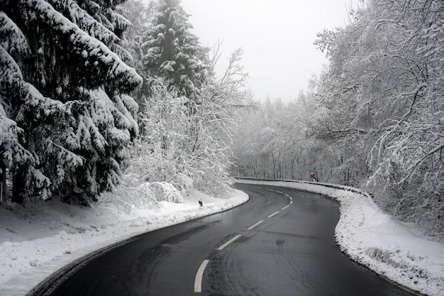 曲がりくねった道が完全に雪に覆われた風景を横切る