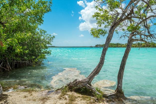 青い水と島の海岸。バカラル、キンタナロー州、メキシコ