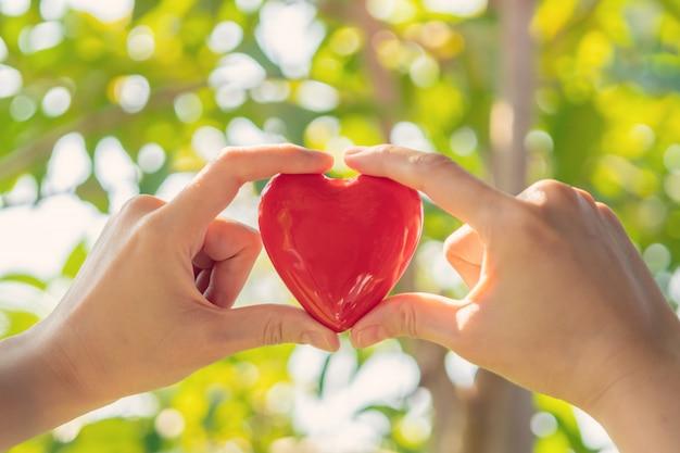 Рука женщины держа красную форму сердца на зеленой естественной предпосылке в саде напольном