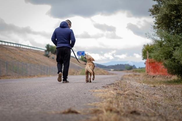 飼い主と犬の散歩