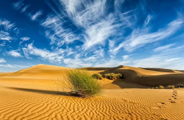 Песчаные дюны в пустыне
