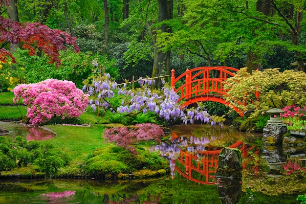 日本庭園、公園クリンゲンダール、ハーグ、オランダ