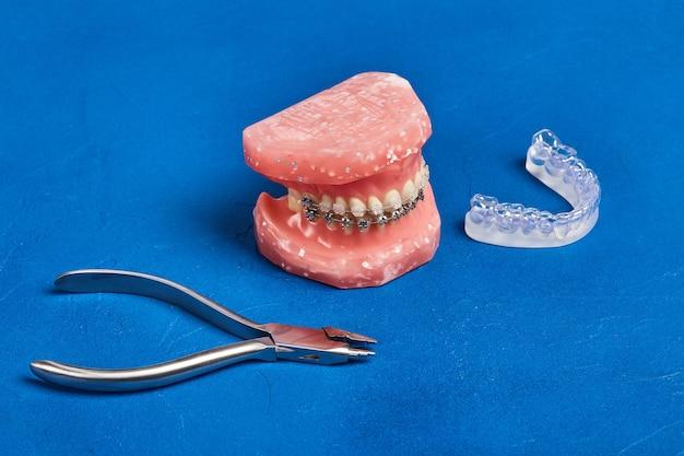 Ортодонтическая модель и набор медицинских металлических ортодонтических инструментов