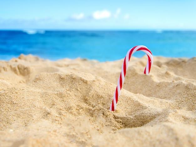 Тропический пляж рождественское и новогоднее украшение