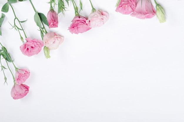 白地にピンクのトルコギキョウの花