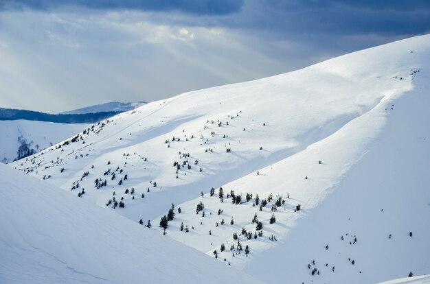 雪に覆われた冬のカルパティア山脈