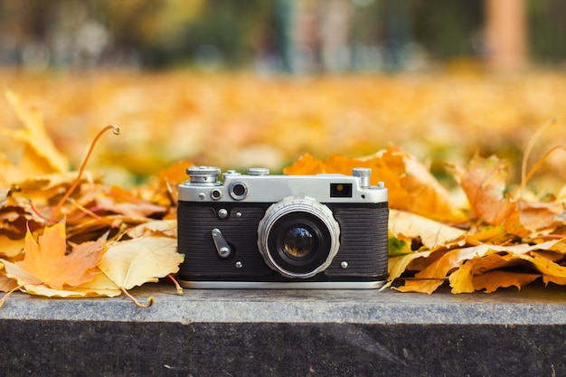 Камера лежит на бордюре в осеннем парке с желтыми листьями