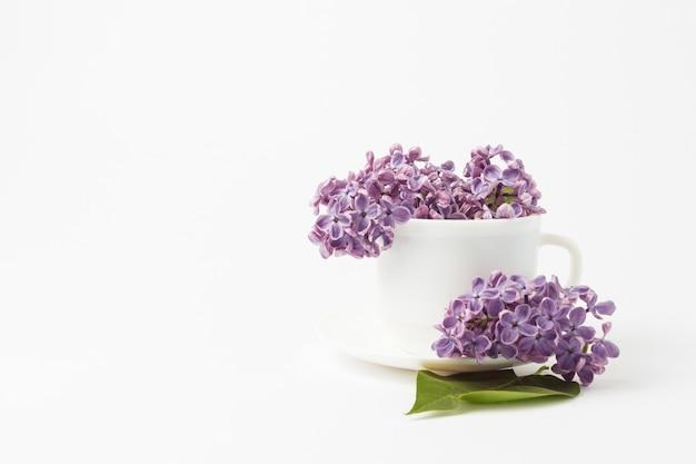 Красивые сиреневые цветы в белой чашке и блюдце на белой поверхности.