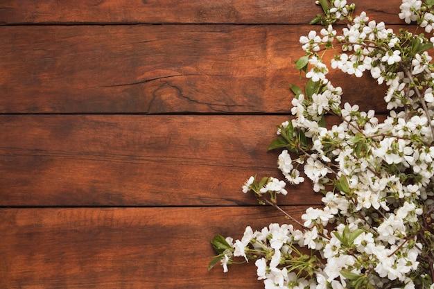 Весенние цветы вишни, темные деревянные поверхности. плоская планировка, вид сверху