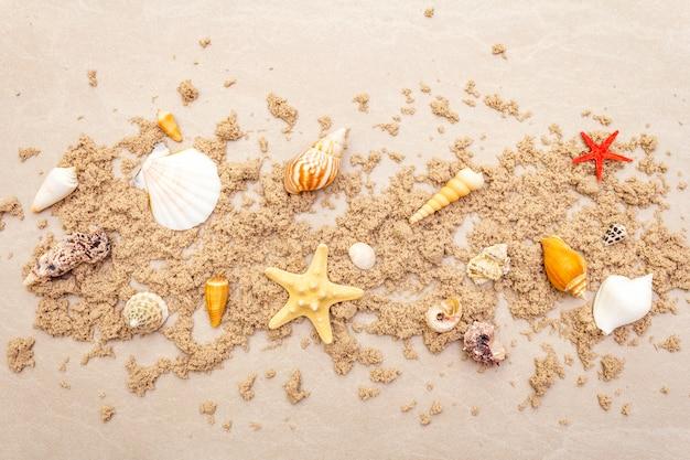 砂と貝殻のトップビュー