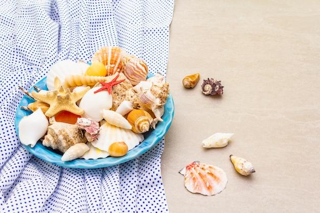 貝殻のプレート、上面図、夏のコンセプト