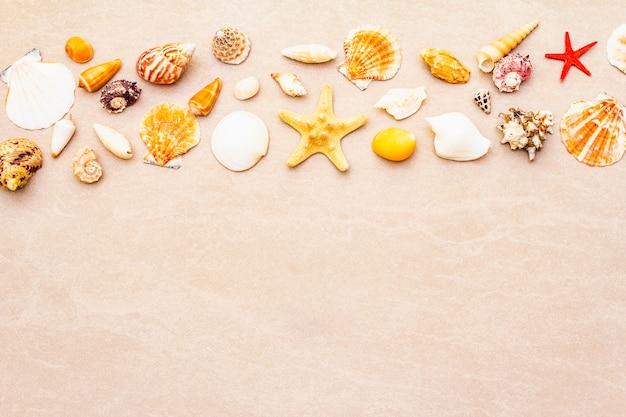 Фон из ракушек, концепция летних каникул