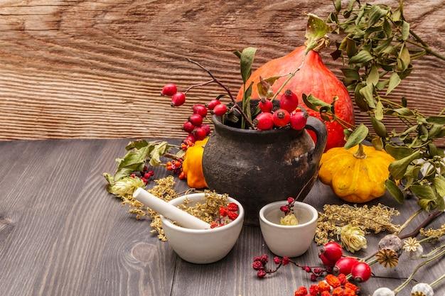魔女ボウラー、ヤドリギ、ニワトコ。乾燥ハーブ、花、新鮮な果実